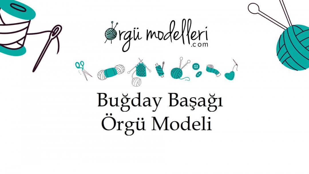 bugday-basagi-orgu-modelini-ogrenelim