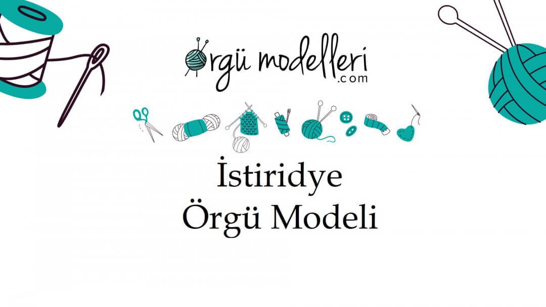 istiridye-orgu-modelini-ogrenelim