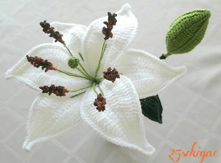 Amigurumi Frida Bozuk Para Cüzdanı Yapımı - Örgü Modelleri | 531x719