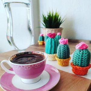 amigurumi-minik-sunum-kaktusleri-yapimi
